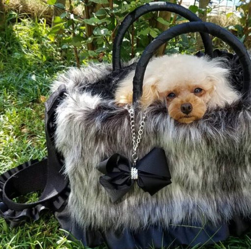 ドッグキャリーバッグが欲しい方はカスタマイズが可能な「ftakako」エフタカコへ